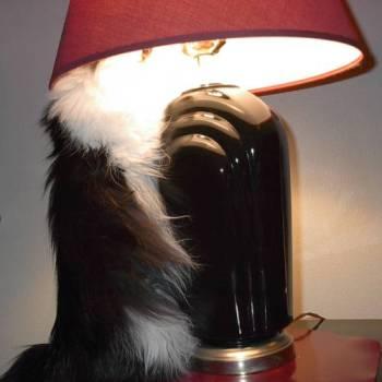 Cheyenne & her lamp2